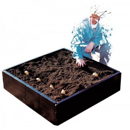 Grow Bed