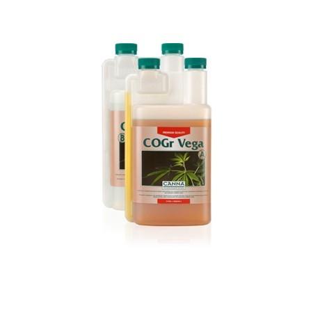 Coco COGR Vega Canna