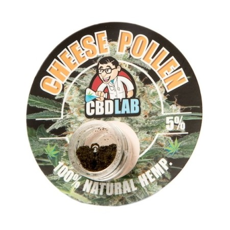 CBD Lab Hash Cheese Plant of Life
