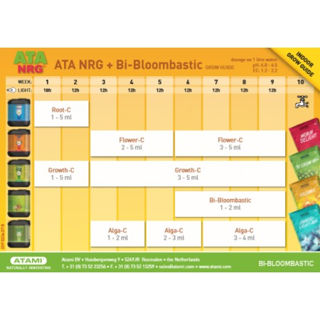 Tabla Atami NRG bi-bloombastic