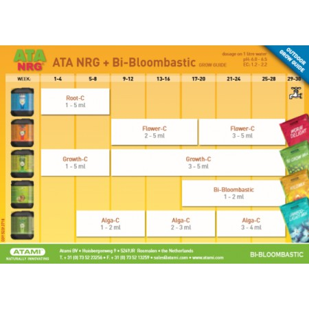 Tabla Atami NRG biobloombastic
