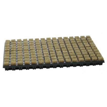 Plugs de lana de roca 150 Alveolos