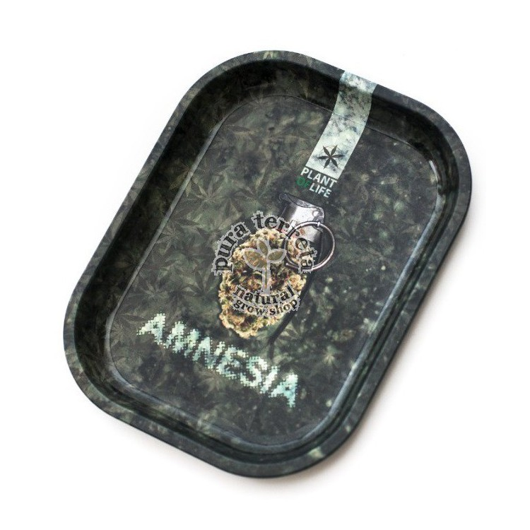 Bandeja Amnesia