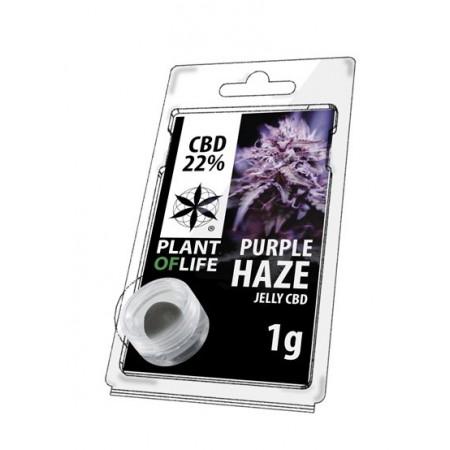 CBD Lab Jelly Purple Haze Plant of Life