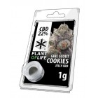CBD Lab Jelly Girl Scout Cookies Plant of Life