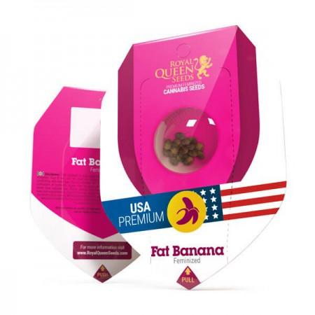 Fat Banana Royal Queen Seeds
