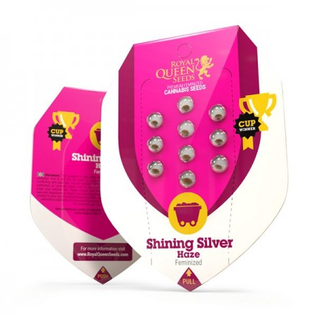 Shining Silver Haze Queen Seeds