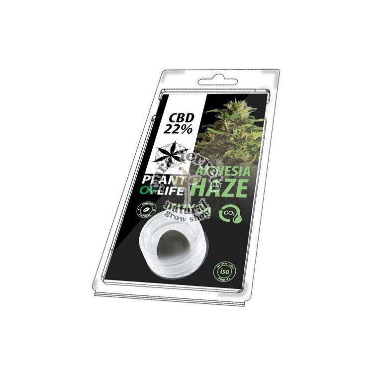 CBD Lab Jelly Amnesia Haze 3 gr.