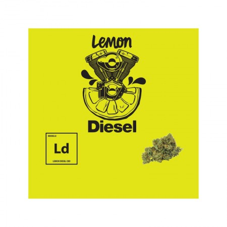 Flores CBD Lemon Diesel Plant of Life