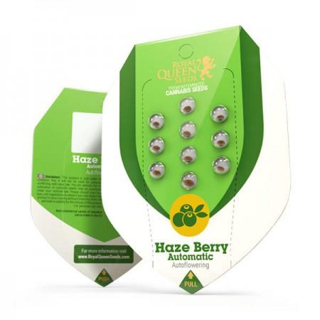 Haze Berry Automatic RQS