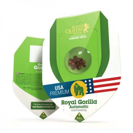 Royal Gorilla Automatic RQS