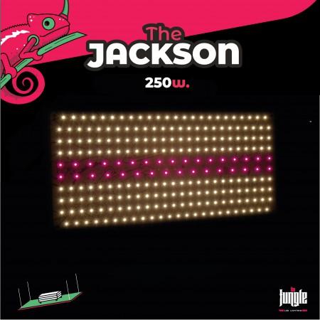 Sistema Led Jackson 250w The Jungle